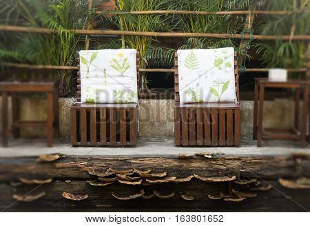 Chairs and table set in jungle restaurant stock photo