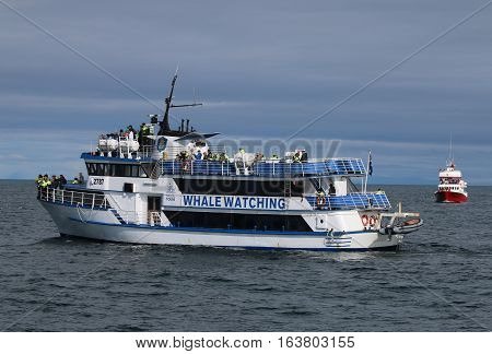 Reykjavik, Iceland - August 7, 2015: Tourists on a Boat at Whale Watching in Reykjavik. Its a fantastic place to see Humpback Whales or Minke Whales