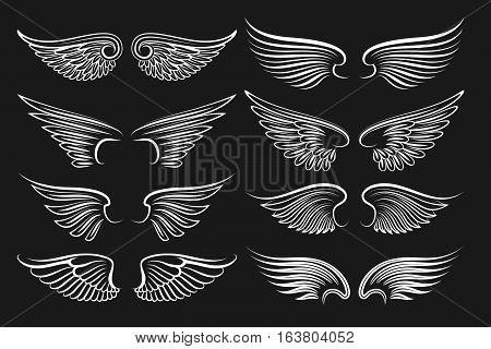 Wings emblem black elements. Vector angels and birds winged labels. Illustration of white wings tattoos
