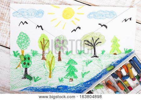 Colorful drawing - forest with beautiful trees
