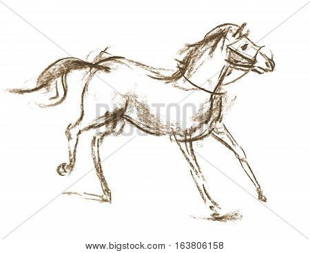 Horse. Sketch. Hand-drawn. Isolated on white background