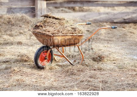 Wheelbarrow with manure and hay in the middle of a paddock