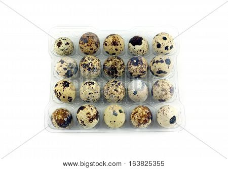 Many mottle quail eggs in plastic packaging cells isolated on white top view closeup