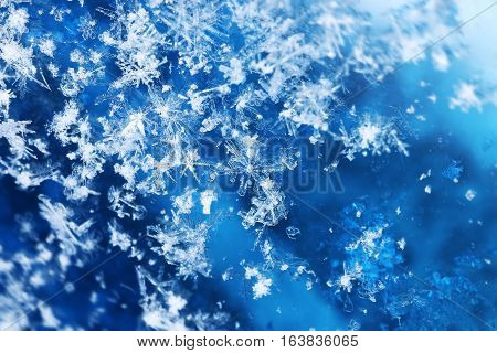 Snowfall close-up frozen ice crystals flying on blue background