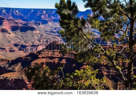 A view of sheer drop-offs into an abyss at the Grand Canyon