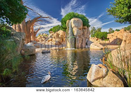 Valencia Zoo - Bio Parc with Baobab Tree and Savana Landscape.