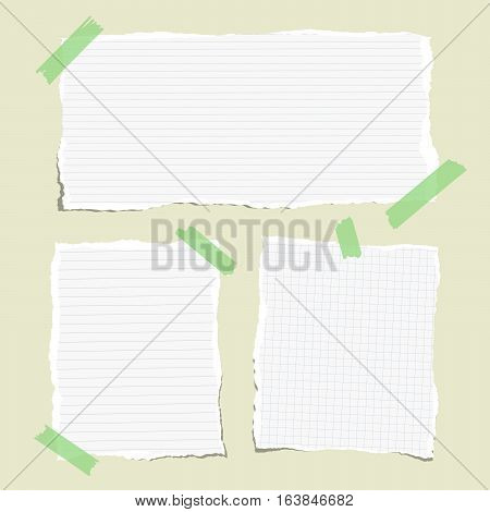 White ruled torn note, notebook, copybook paper sheets stuck with sticky tape.