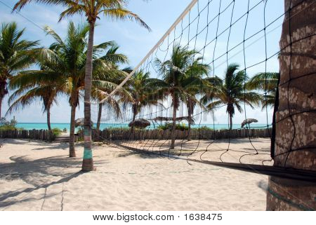 Beach volleyball net surrounded by coco palm trees poster