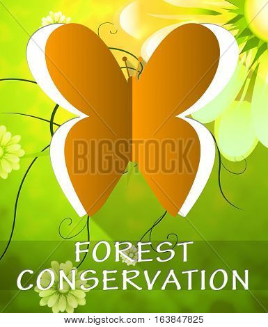 Forest Conservation Butterfly Shows Preservation 3D Illustration