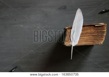 Feather pen and old book on blackboard. Vintage composition. Course list.