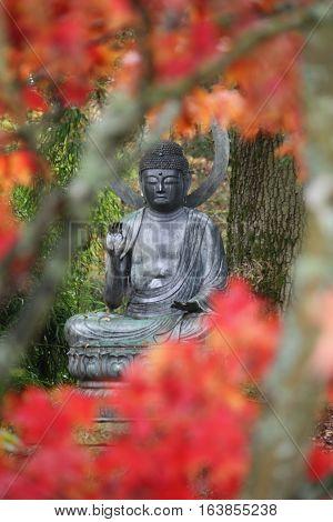 buddha statue at batsford arboretum through red leaves