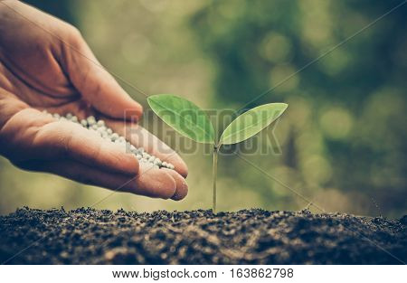 Agriculture / Nurturing baby plant / protect nature / planting tree