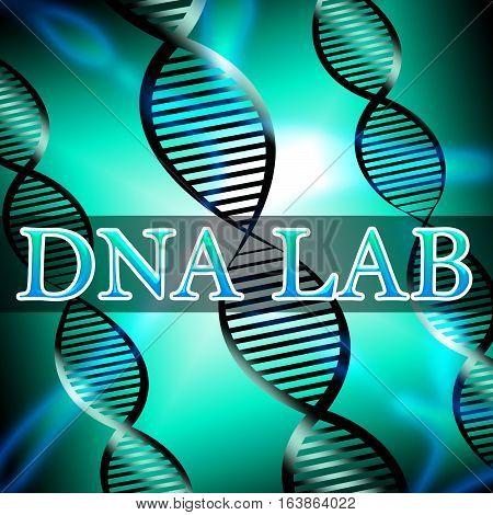 Dna Lab Shows Biotechnology Labratory 3D Illustration