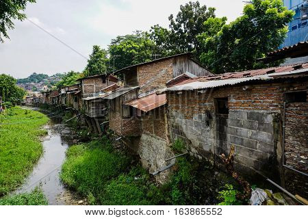 Slums beside the river with bushes photo taken in Semarang Indonesia java