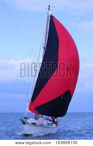 Yacht Sail Sailing Sailboat Sails Red Black Spinnaker Cruising Chute Sea Ocean Coast Boat Yachting W