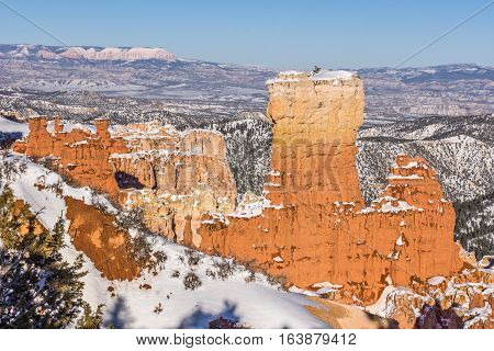 Late afternoon sunlight shining on the canyon walls fins and hoodoos at Ponderosa Point in Bryce Canyon National Park in Utah
