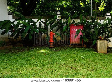A red hydrant box in the middle of green grassy garden photo taken in Semarang Indonesia java