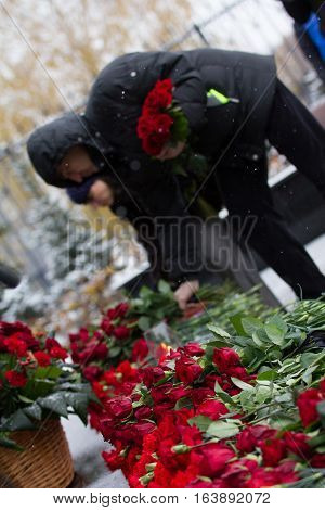 Carnation symbol of mourning - laying flowers to the monument, telephoto
