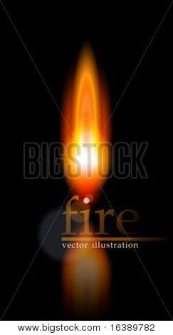Flame. Vector illustration. Eps10
