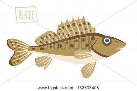 Brown spotted Ruffe, vector illustration cartoon style