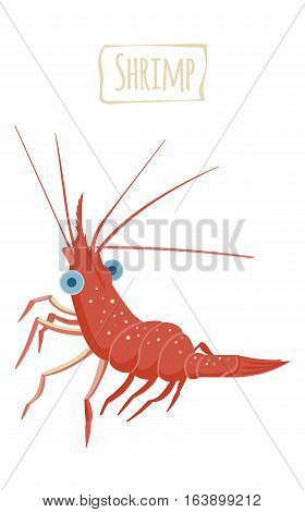 Funny red Shrimp, vector  illustration cartoon style