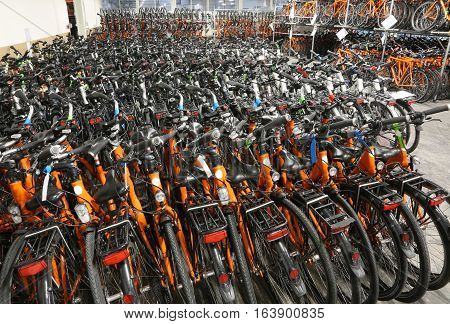 Warehouse Of Bicycles For Touring On Two Wheels