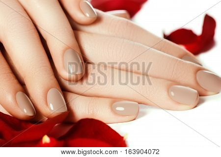 Perfect Manicure. Woman Hands With Manicured Natural Beige Nails