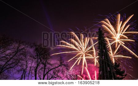 New yeas's fireworks behind a tall Christmas tree in Bucharest