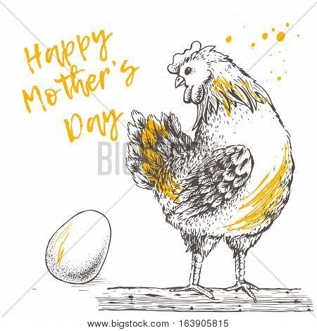Design with brood-hen on white background. Happy Mother s day. Hand drawn. Hen looks with tenderness and love for its egg. Picture of vector for your design. Handmade illustration.