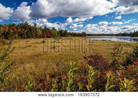 Save The Wetlands. Seney National Wildlife Refuge wetlands under blue sky and surrounded with autumn color. Seney, Michigan.