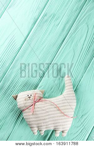 striped cat on a wooden mint background