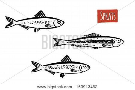 Sprats, black and white vector illustration, cartoon style