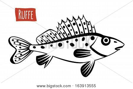 Ruffe, black and white vector illustration, cartoon style