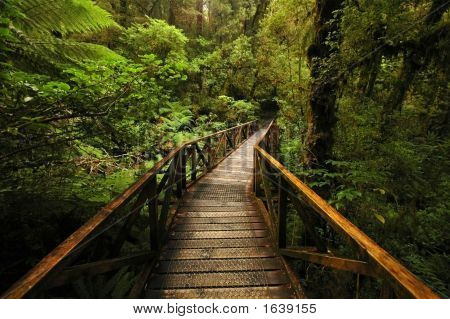 Cauldron Falls Walk
