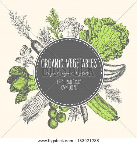 Design template for vegetables market. Menu label with organic food. Fresh vegetables hand-drawn. Vector illustration.