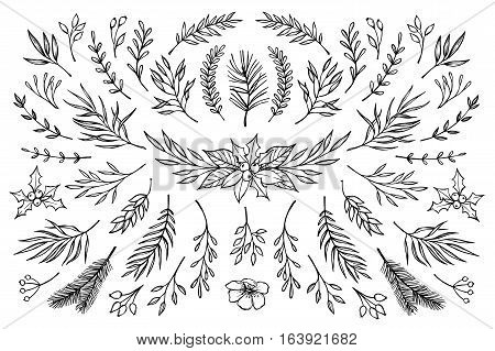 Hand Drawn Vector Winter Elements ( Laurel, Frame, Leaf, Poinsettia, Holly, Fir And Pine Branches, B