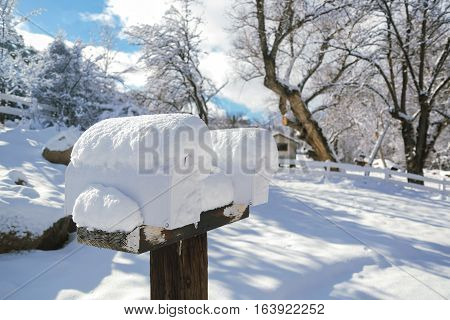 Snow Covered Mailboxes 01 - A winter and snowy rural scene featuring an pair of post supported and snow covered mailboxes. The background features a slight hill, trees, an old summer cabin, and a bright blue sky with some cloud cover.