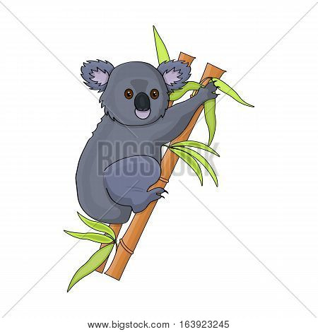 Australian koala icon in cartoon design isolated on white background. Australia symbol stock vector illustration.