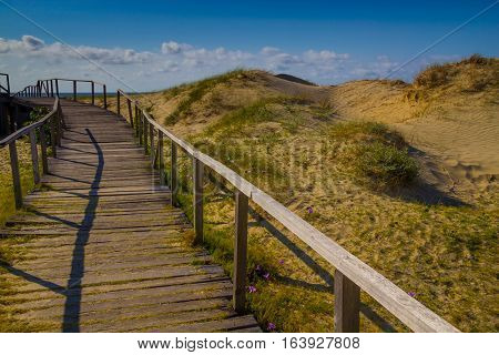 Wood Bridge Over Dunes, Vegetation And Ocean In Background At Cassino Beach