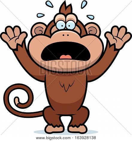 Cartoon Monkey Panicking