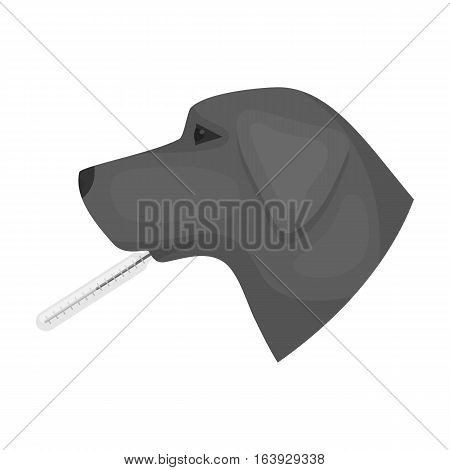 Dog with thermometer icon in monochrome design isolated on white background. Veterinary clinic symbol stock vector illustration.
