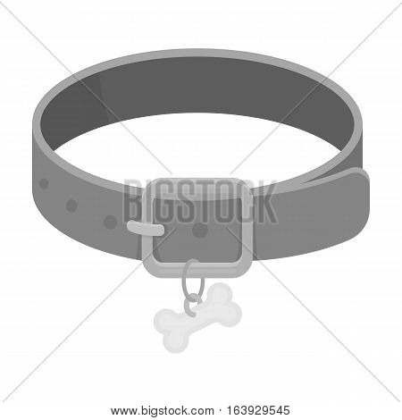 Dog collar icon in monochrome design isolated on white background. Veterinary clinic symbol stock vector illustration.