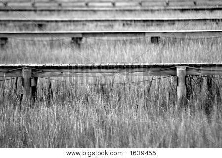 Docks In The Marsh
