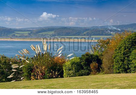 View of the estuary Exe River. Shrub the Pampas in the foreground. Green lawn. Exmouth. Devon. UK