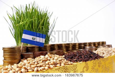 El Salvador Flag Waving With Stack Of Money Coins And Piles Of Wheat And Rice Seeds