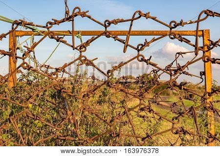 Antique farm equipment being used as a fence.  Its rusty and abandoned.
