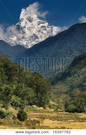 Himalayan countryside with Machhapuchhre mountain in background poster