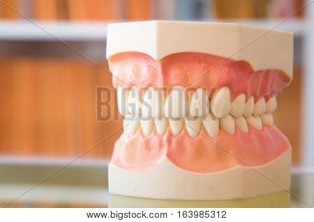 Dental jaw model in dentist's office on Document of patient records background.