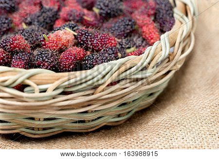 Fresh mulberry in basket put on sackcloth, sackcloth