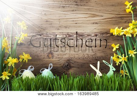 Wooden Background With German Text Gutschein Means Voucher. Easter Decoration Like Easter Eggs And Easter Bunny. Sunny Yellow Spring Flower Narcisssus With Gras. Card For Seasons Greetings